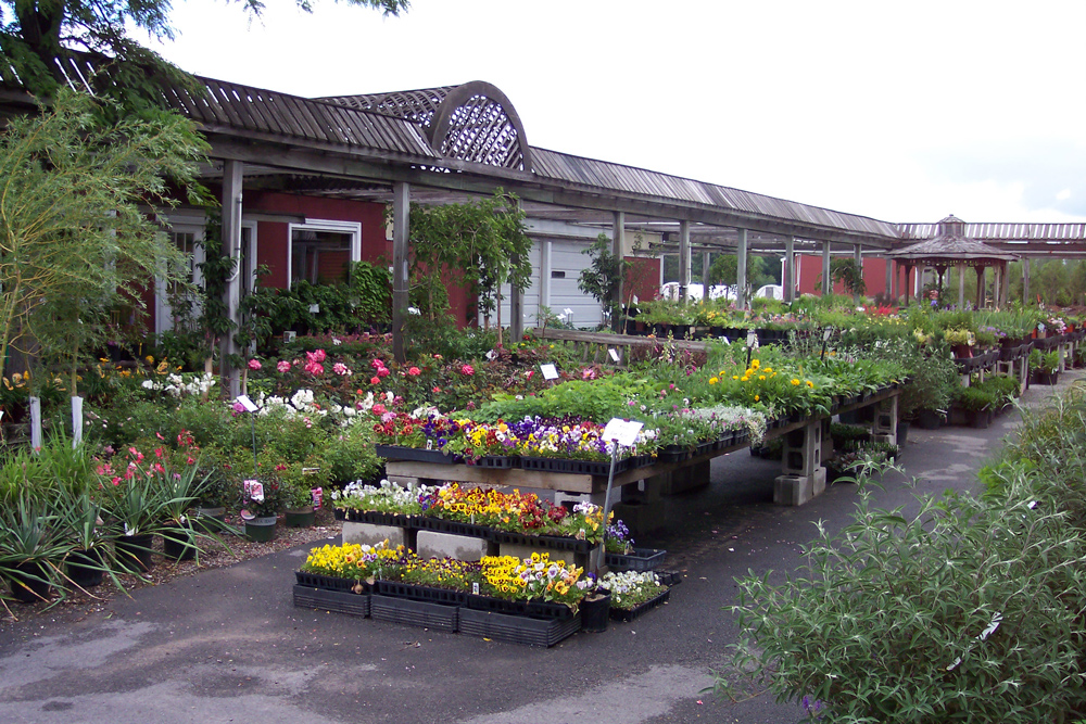Garden Shop Woodstream Nurseries Clarence Center NY 716 741 3434